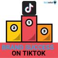 BRAND SUCCESS ON TIKTOK-2
